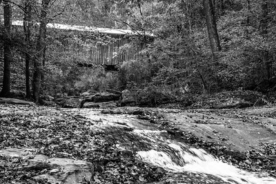 Elder Mill Covered Bridge Downstream (BW)