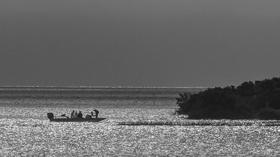 Early Morning Fishing at Cedar Key