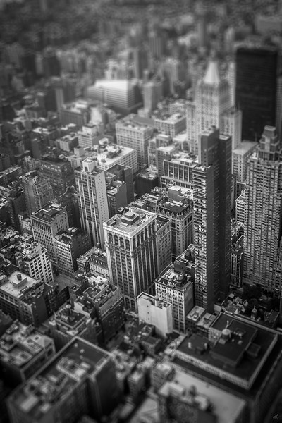 Tiny New York