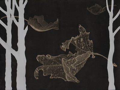 """Frail Remnants"" (silverpoint-Mylar on black ground) by Jeannine Cook"