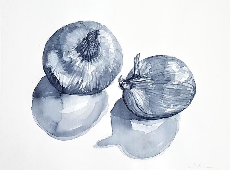 """Onion"" (watercolor) by Cena O'Brien"