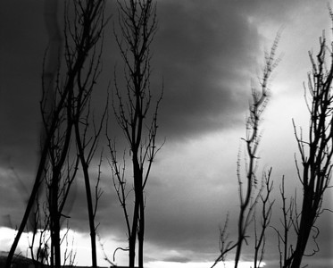 """Dusk at midnight"" (silver gelatin) by Austin Cullen"