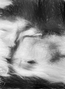 """Hurricane winds"" (digital) by Lillianne Daigle"