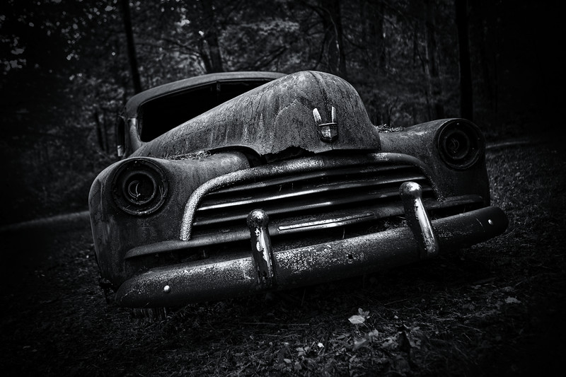 Car in trees