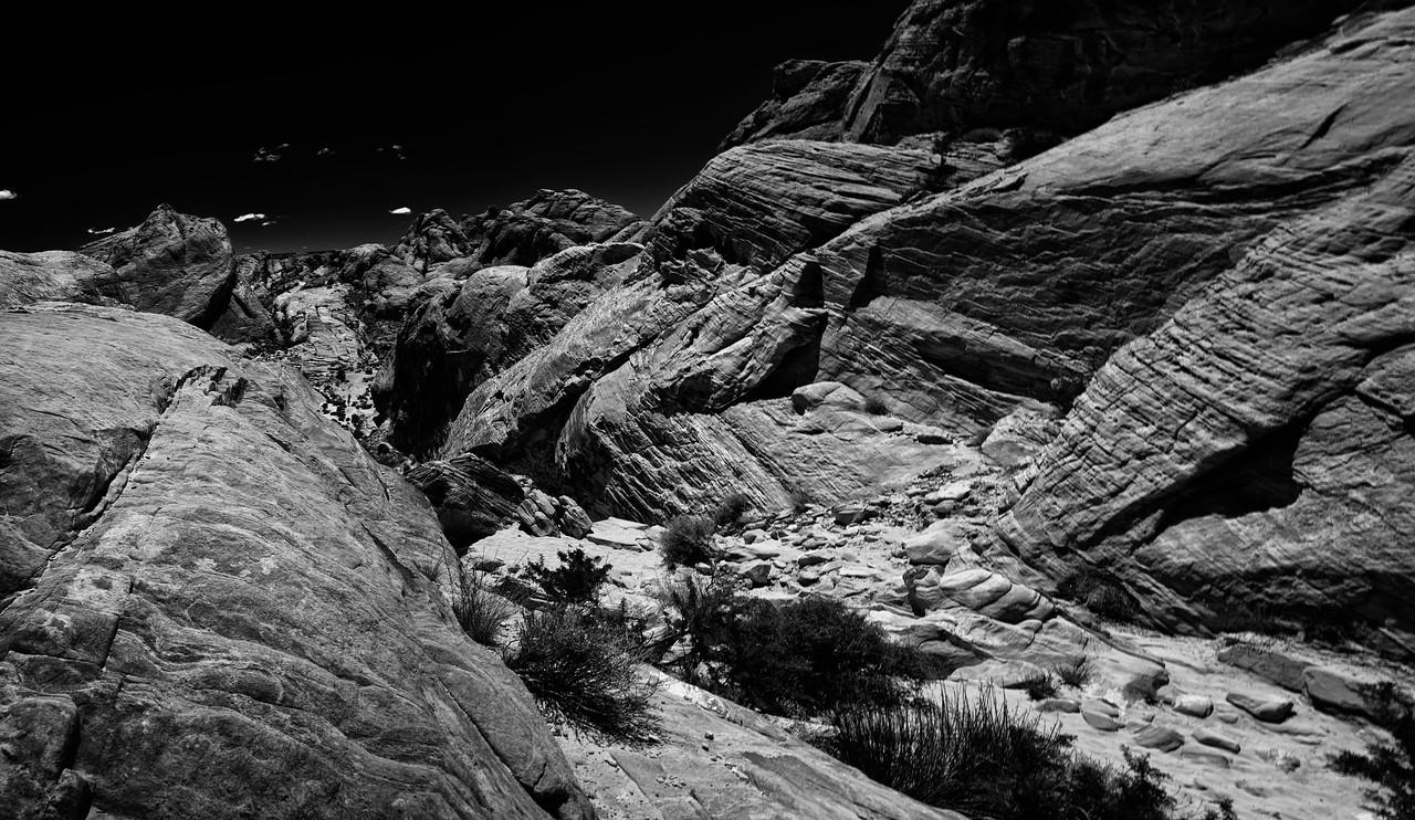 Desert Ravine B & W