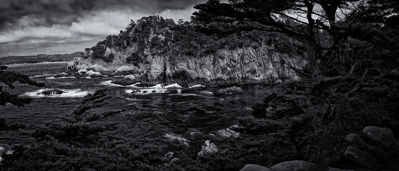 Point Lobos Pano B&W