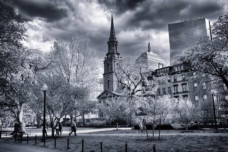 Boston Commons, MA -Spring