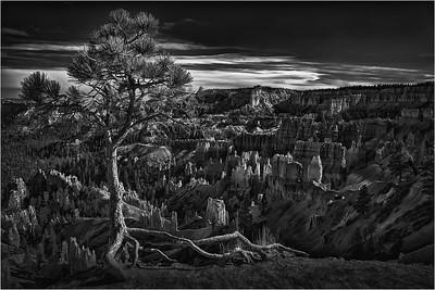 Bryce Canyon 14a