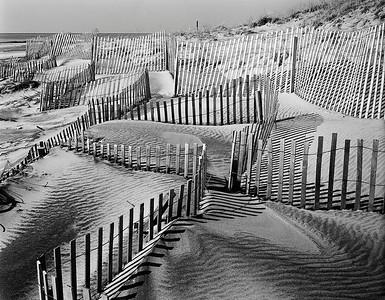 Beach Fences #1
