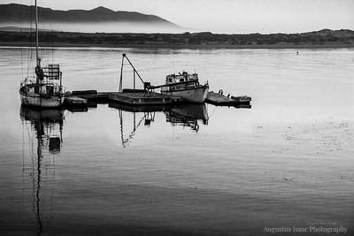 A Fishing Tale