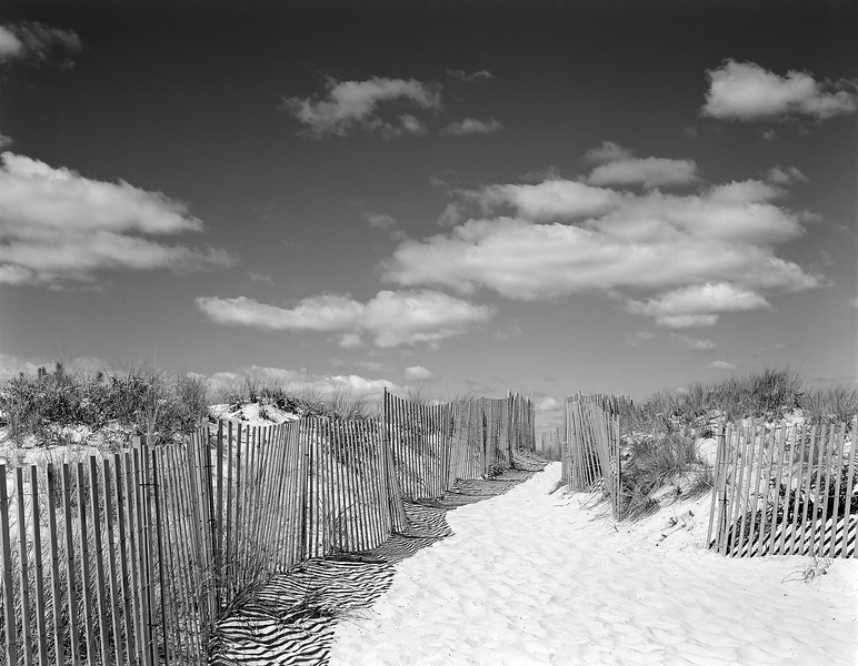Beach Fences No. 6