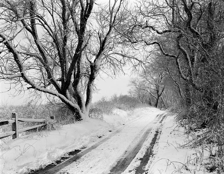 Dirt Road In Winter
