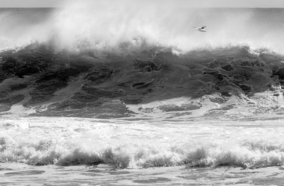 Coopers Beach Surf #2