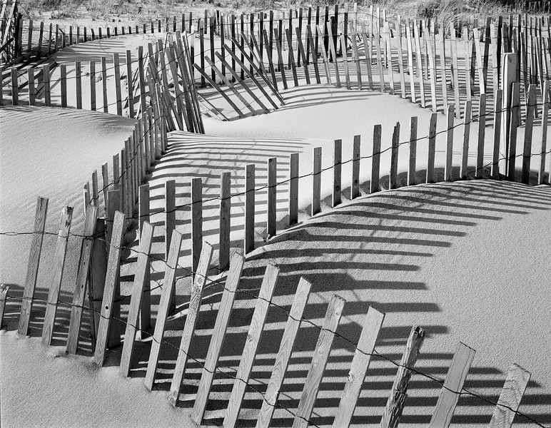 Beach Fences #7