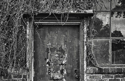 Overgrown Door, Old Horner Woolen Mill