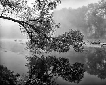 """Morning Fog on The Grand River"""