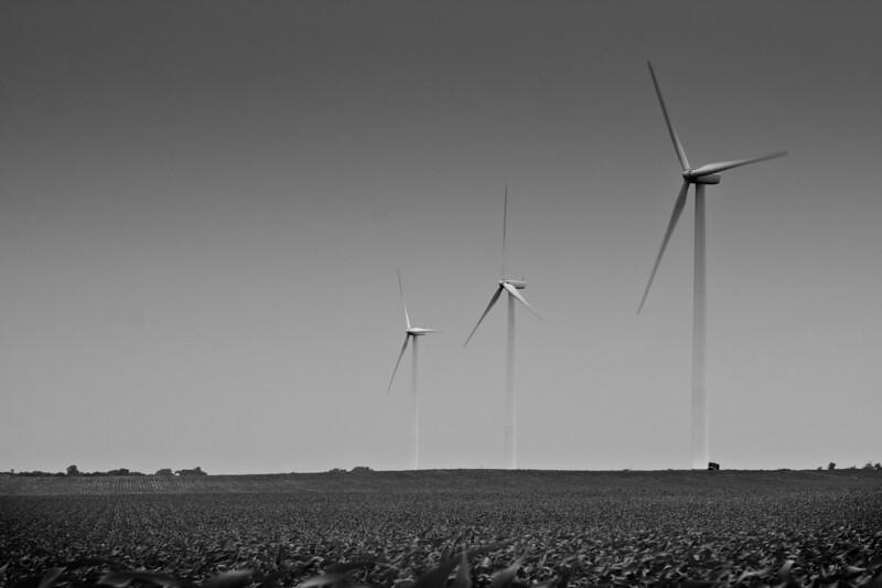 Windmills in Corn
