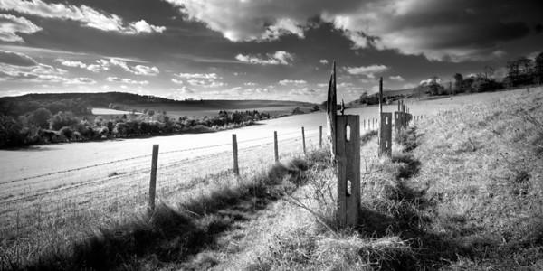 Aldbury Fields