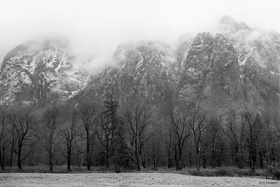 Mount Si Fog, King County, WA