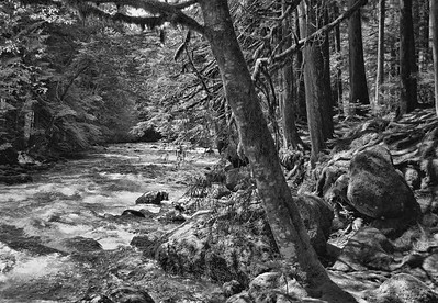 Buck Creek, Snohomish County, WA