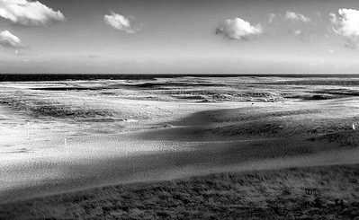 Cape Cod Beach  BW2