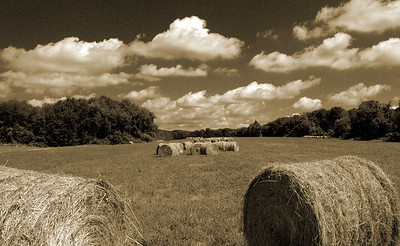 rolling hay 2