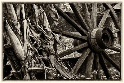 wheel sipa