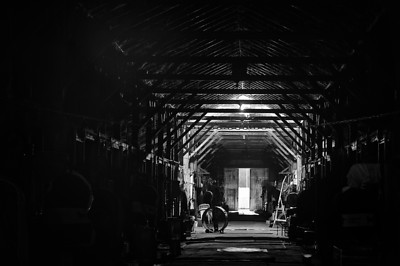 Quiet Barn