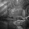 Hidden Falls #1