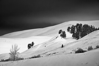 Winter In Lamar Valley