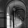 """Academic Arches II"" - Rice University, Houston, TX"