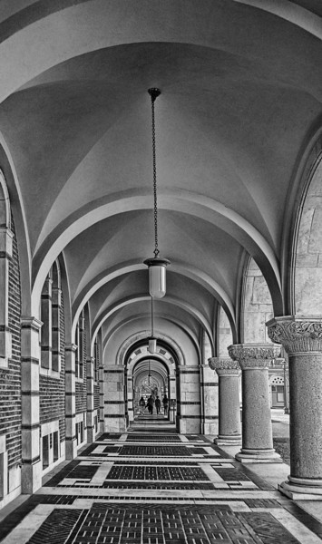 """Academic Arches I"""