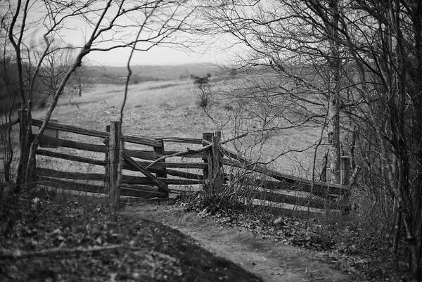 Blue Ridge Fence #1
