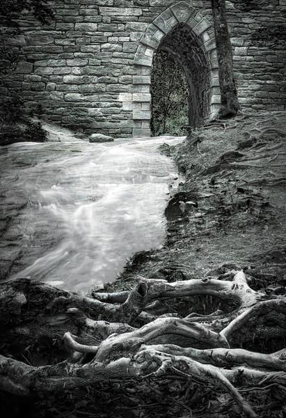 Poinsett Bridge