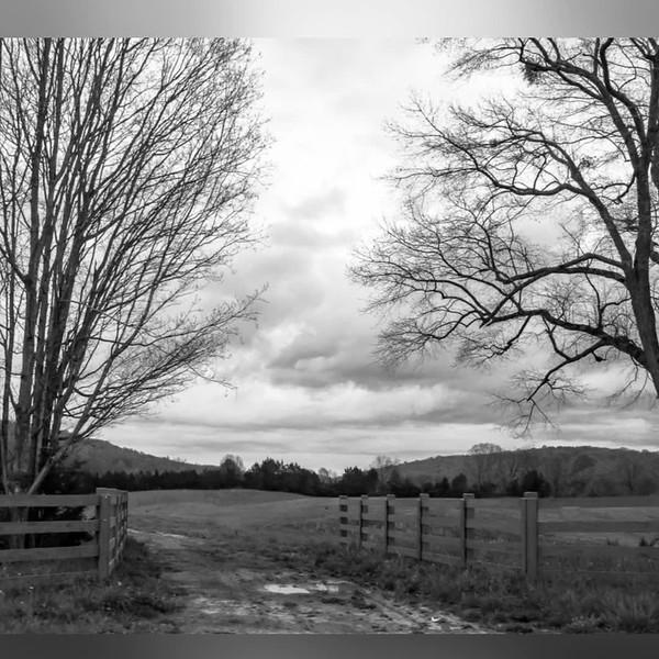 2018 Black & White: 2018 Black & White Photo Slideshow