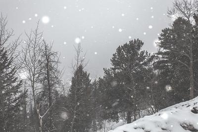 Boreas Pass | Breckenridge, Colorado