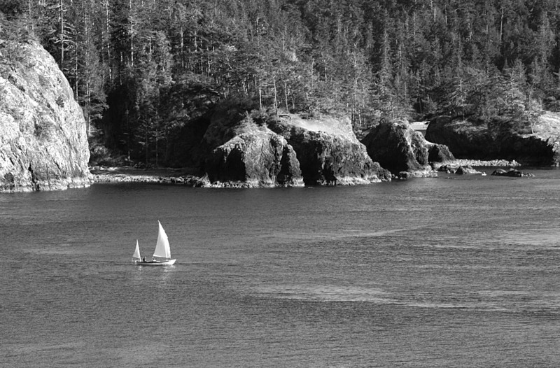 Some rugged shorline of Deception Pass area.