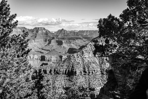 Grand Canyon National Park #3