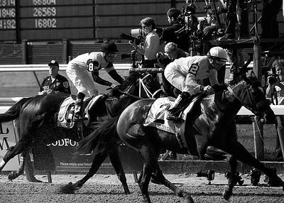 Belmont Park Stakes, Elmont, New York