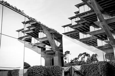 La Jolla Escher 9839bw