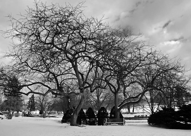 Cedar Creek Park - Allentown, PA - 2012