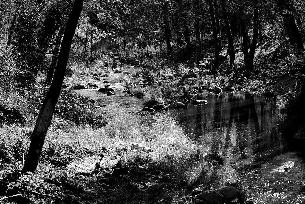 Oak Creek West Fork Trail