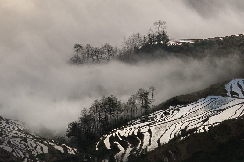 Hani rice terraces in the mist