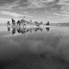 Tufas at Mono Lake
