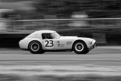 1964 AC Cobra Snake Express Joe Twyman James Cottingham - Goodwood Revival 2015