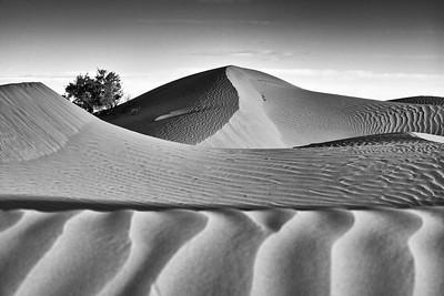 Dunes of Mhamid
