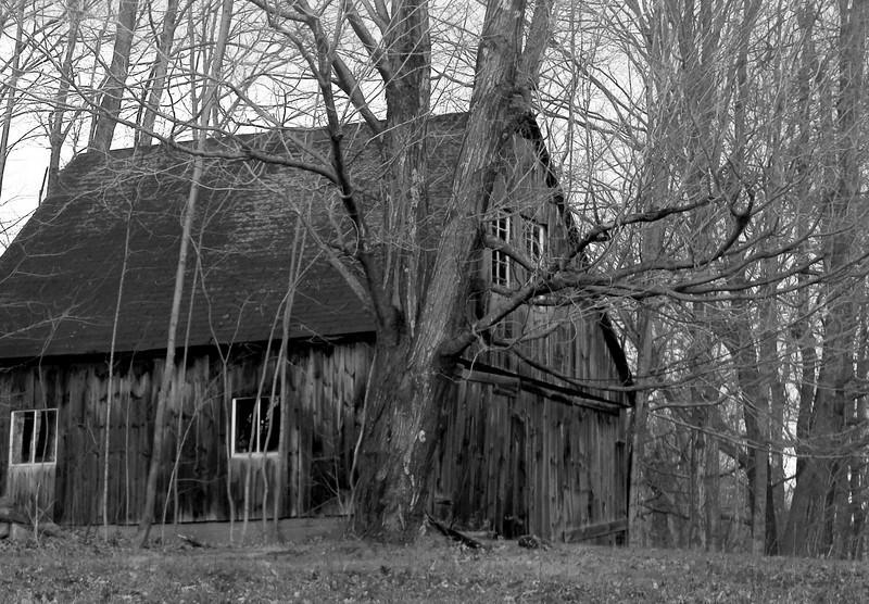 Alstead, N.H.