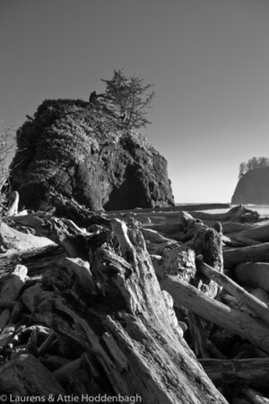 Olympic National Park, Olympic NP, Second Beach near La Push