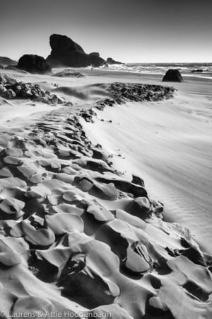 Oregon Coast Hwy