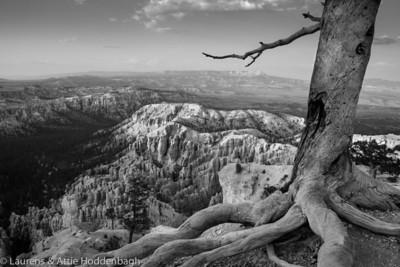 Bryce Canyon, Bryce Point,  UT, USA  Filename: CEM013390-BryceCanyon-UT-USA.jpg